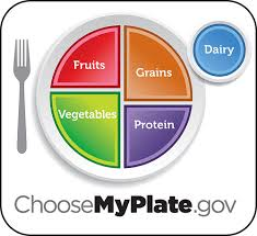 my plate 1